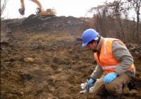 Techniques for Contaminated Soil Remediation